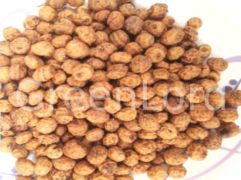 where to buy tiger nuts