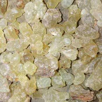boswellia gum resin